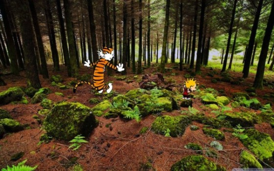 Calvin-and-Hobbes-Real-Photographs-11-600x375